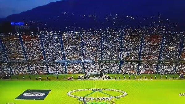 Chapecoense, l'omaggio di Medellin. Decine di migliaia allo stadio. Liberate 71 colombe