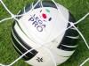 La Lega Pro tornerà a chiamarsi Serie C. Sulla mutualità minacciata la sospensione dei campionati