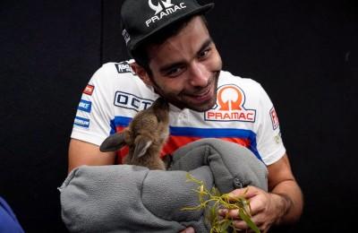 """Danilo Petrucci con un cucciolo di canguro: """"Mi ha baciato ma aveva problemi con la barba..."""""""
