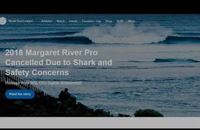 Troppi attacchi di squali. Cancellato torneo di surf