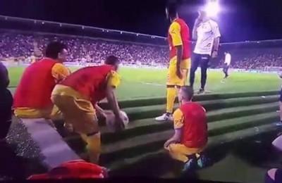 """Frosinone-Palermo, il referto: """"Arbitro addizionale colpito in lancio di oggetti"""" e """"tifosi negli spogliatoi"""""""